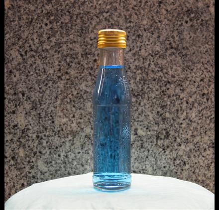 Bottle Thunderbird 100ml 10cl