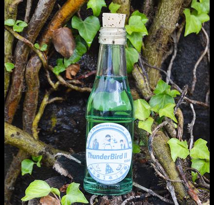Bottle Thunderbird II 100ml 10cl