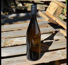 Champagne Green Glass Bottle 750ml