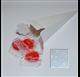155 compartiment de cône de balle de blanc