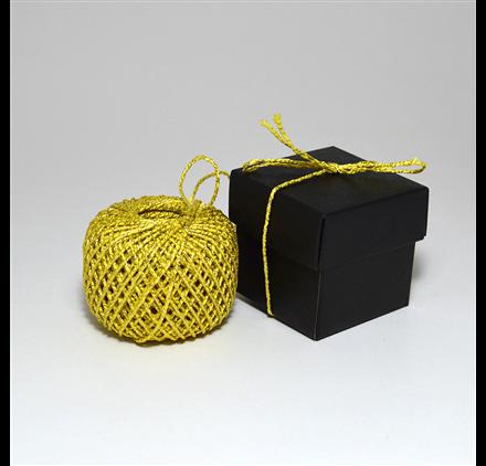 Cordão filex Golden Shiny String