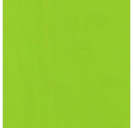 papel de embrulho liso verde claro